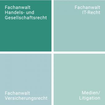 gabor_grafik_taetigkeitsfeld_gesellschaftsrecht