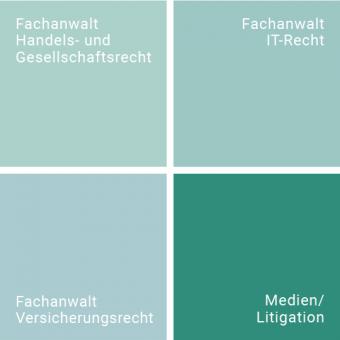 gabor_grafik_taetigkeitsfeld_medien_litigation